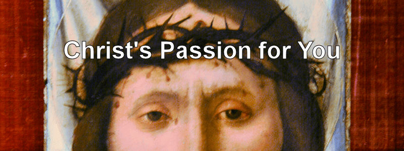 Christ's Passion for You